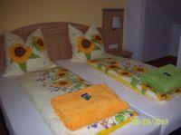 Sonnenblume-schlafen